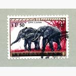 Ele. Briefmarken Burundi ( Ruanda)