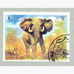 Ele. Briefmarken Emirate 1