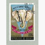 Ele. Briefmarken Guinea 1967