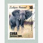 Ele. Briefmarken Kuba 1