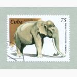 Ele. Briefmarken Kuba