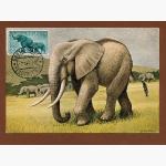 Ele. Briefmarken Postkarte 1958
