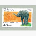 Ele. Briefmarken Sahara