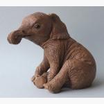 Ele. Babyelefant USA