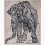 Ele. Kunst E.M. Geyger Litho 1888