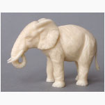 Ele. Weißer Elefant 1
