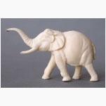 Ele. Weißer Elefant 2